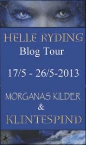 Blog Tour side-banner1